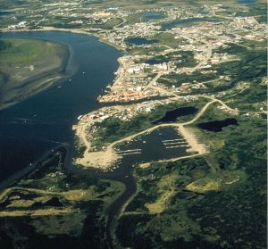 Aerial view of Bethel, Alaska, via Wikipedia