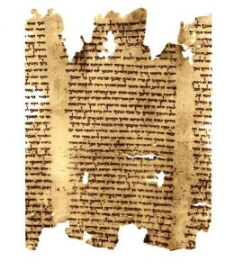 Jesus read from a scroll much like this when he was in the Synagogue in Narzareth Dead Sea Scroll - part of Isaiah Scroll, via Wikipedia by Daniel Baranek