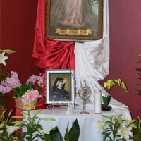 Many Come To Honor The Lord Of Divine Mercy